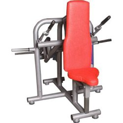 CHEST AND TRICEPS - MACHINE...